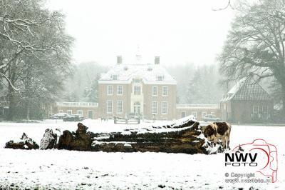 Winterse beelden omgeving 'tHarde - ©NWVFoto.nl