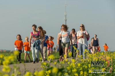 Avondwandel vierdaagse Elburg woensdagavond. - ©NWVFoto.nl
