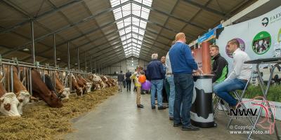Open dag bij biologisch melk en vleesveebedrijf Ko-Kalf in Doornspijk  - ©NWVFoto.nl