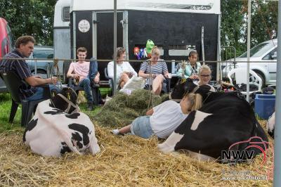 Oogstfeest en fokveedag rond  de museumboerderij in Oldebroek. - ©NWVFoto.nl