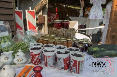 Oldtimerdag bij fam Karzijn aan de Koeweg op 'tHarde. - ©NWVFoto.nl