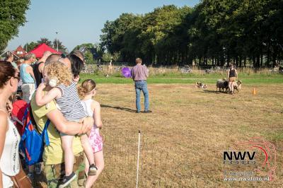 Zeer warme schapenmarkt Oldebroek. - ©NWVFoto.nl