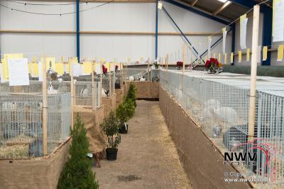 Kleindieren tentoon stelling van Sport veredelt bij van de Put in Oosterwolde. - ©NWVFoto.nl