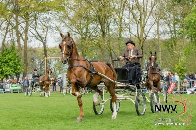 36 ste Tuigpaardenconcours  in Doornspijk. - ©NWVFoto.nl