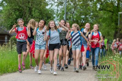 Avondwandel vierdaagse dinsdagavond Elburg. - ©NWVFoto.nl