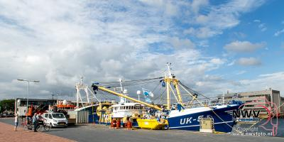 Bedrijvigheid in de Haven van Urk. - ©NWVFoto.nl