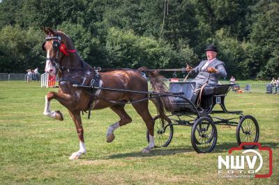 Fokdag en Concours Zwaluwenburg op 't Harde. - ©NWVFoto.nl