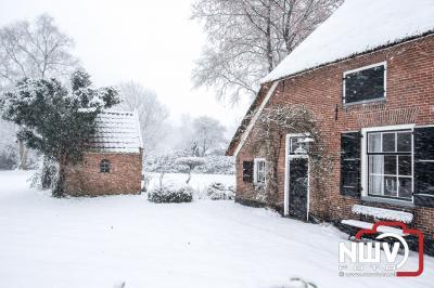 Sneeuw zorgt voor mooie plaatjes op 'tHarde. - ©NWVFoto.nl