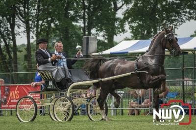 37e Tuigpaardenconcours Doornspijk. - ©NWVFoto.nl