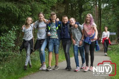 De eerste avond liepen de wandelaars via de Hokseberg naar het bosgebied rond de scouting Gustaf Adolf Groep en het waterwingebied De Haere. - ©NWVFoto.nl
