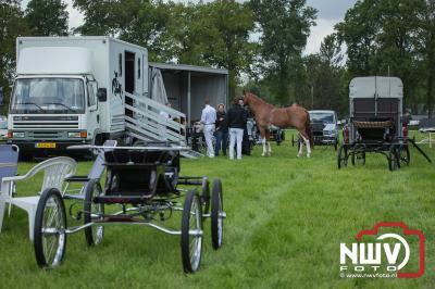 38 ste Tuigpaardenconcours in Doornspijk onder ideale omstandigheden gehouden. - ©NWVFoto.nl