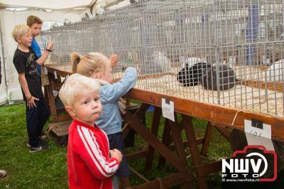 Sport Veredelt Oldebroek. Jongdierendag bij Gardenbroek in Oostendorp. - ©NWVFoto.nl