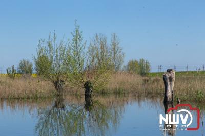 Mooi stuk natuurgebied gekeerd door de aanleg van het Revediep. - ©NWVFoto.nl