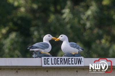 Elburger Sportclub kan beker vergeten. - ©NWVFoto.nl