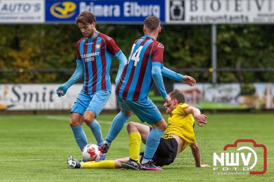 VSCO61 trekt herstel niet door. - ©NWVFoto.nl